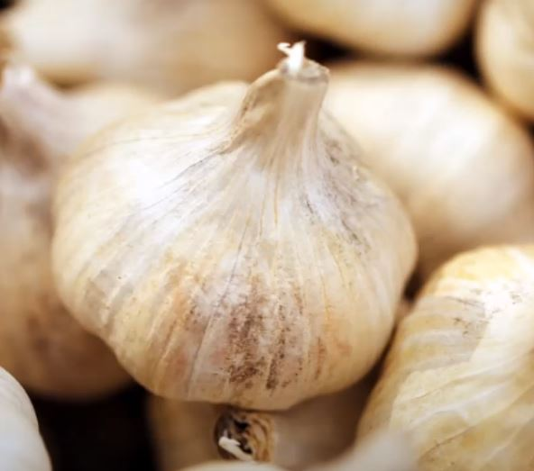 how much is a clove of garlic